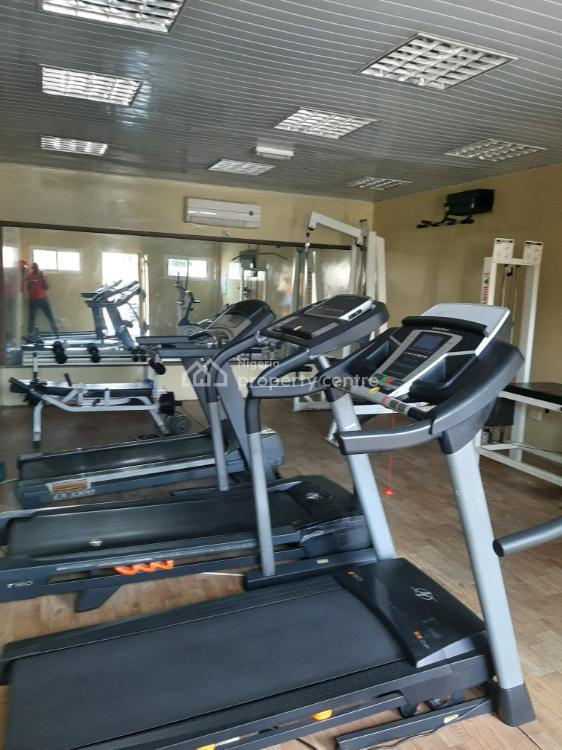 Spacious 4 Bedroom Penthouse with Gym House and Swimming Pool, Banana Island Estate, Banana Island, Ikoyi, Lagos, Terraced Duplex for Rent