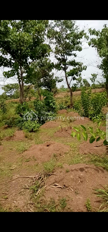 Deed of Assignment and Irrevocable Power of Attorney, Nkubor Village, Emene, Enugu, Enugu, Mixed-use Land for Sale