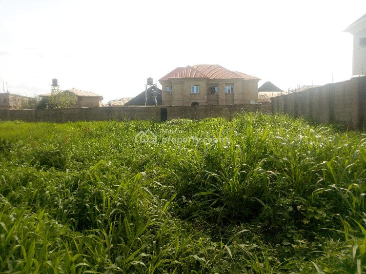 Strategic Two Plots in a Gated Estate, Prosperity Street, Peluseriki Off Ire Akari Estate Akala Express, Challenge, Ibadan, Oyo, Residential Land for Sale