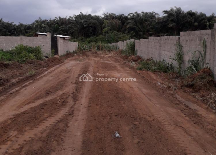 Fish Farm, Agodo Ilisa Village, Igbessa, Agbara, Ado-odo/ota, Ogun, Tank Farm for Sale