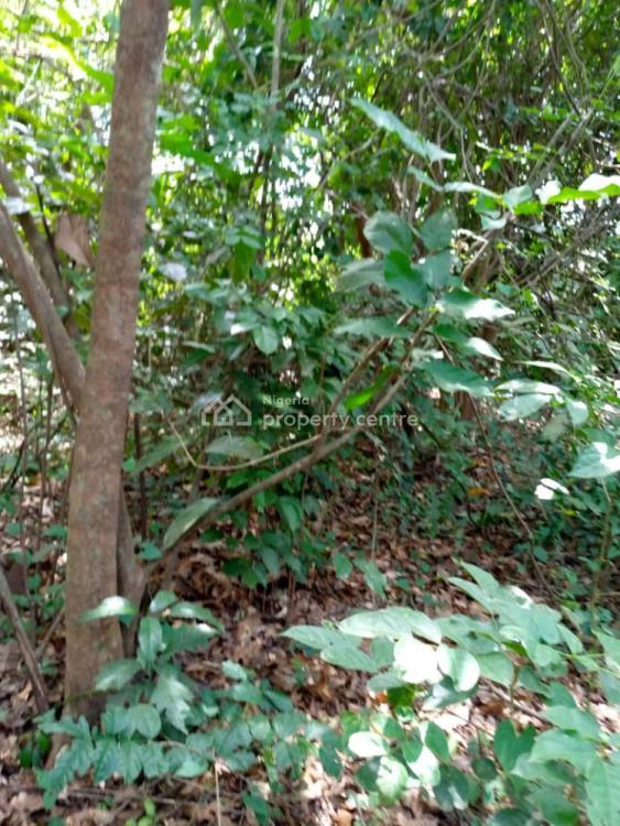 Farm Land, Odeda, Ogun, Commercial Land for Sale