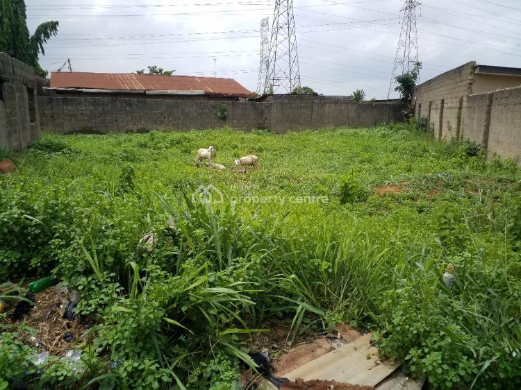 Certificate of Occupancy, Elepe, Along Ijede Road, Ikorodu, Lagos, Detached Duplex for Sale