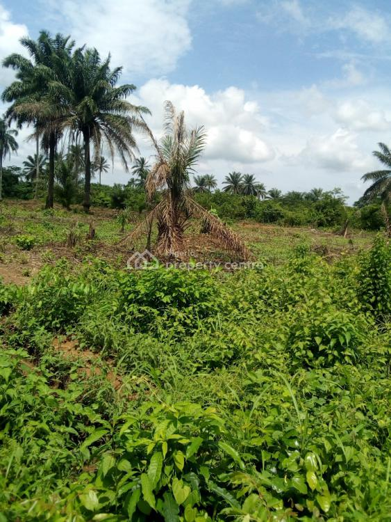 Land By The Beach, Eleko Beach, Eleko, Ibeju Lekki, Lagos, Mixed-use Land for Sale