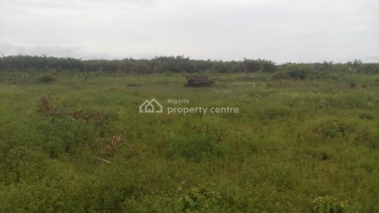 Land, Osoroko, Eleko, Ibeju Lekki, Lagos, Mixed-use Land for Sale