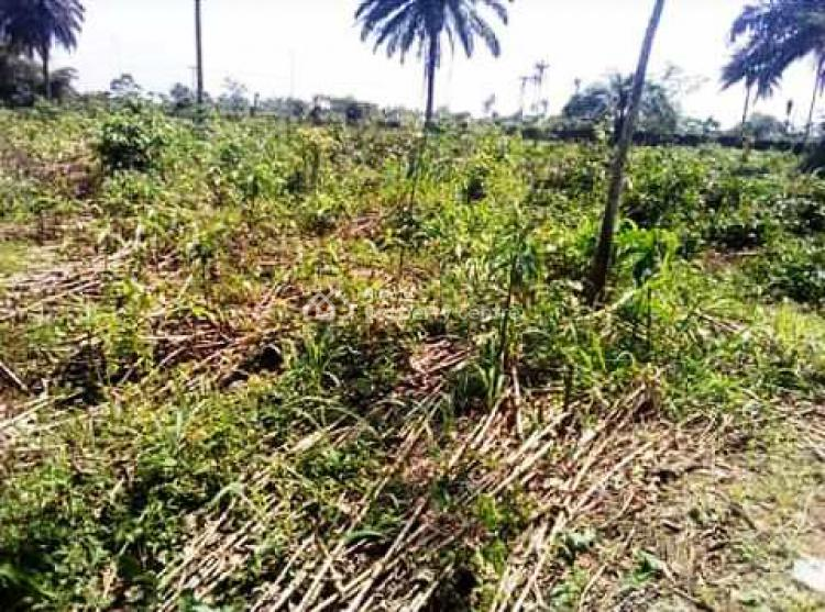 a Very High Dry Land  (13 Plots), New Airport Road After Opm Church, Obio-akpor, Rivers, Commercial Land for Sale