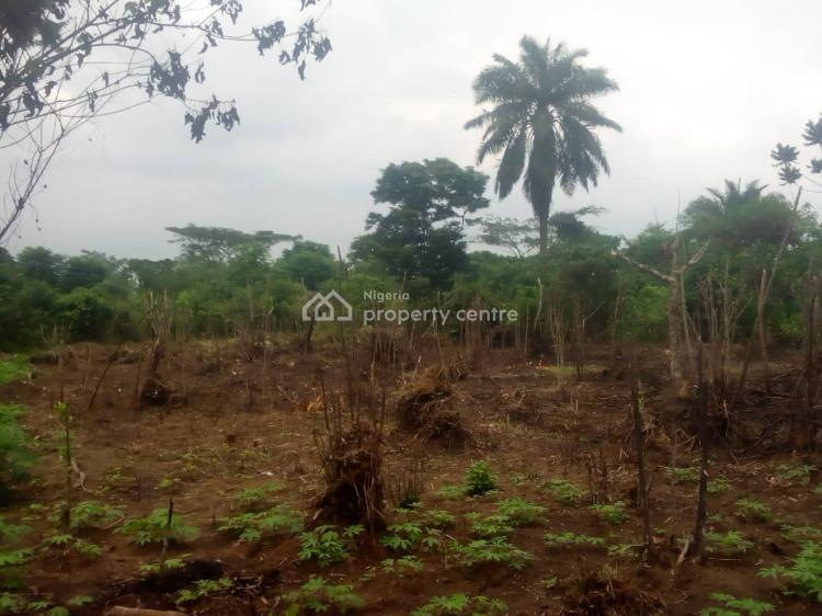 a Table Land, Abara Community, Etche, Rivers, Residential Land for Sale