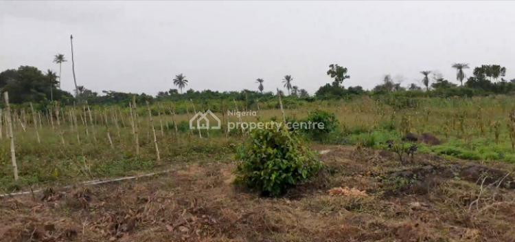 Affordable Farm Land (acres), Alfa/ashero Via Siun, Off Abeokuta Expressway, Obafemi Owode, Ogun, Commercial Land for Sale