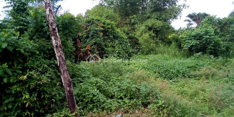 Residential Land in a Developed Area, Ajibode, Ibadan, Oyo, Residential Land for Sale