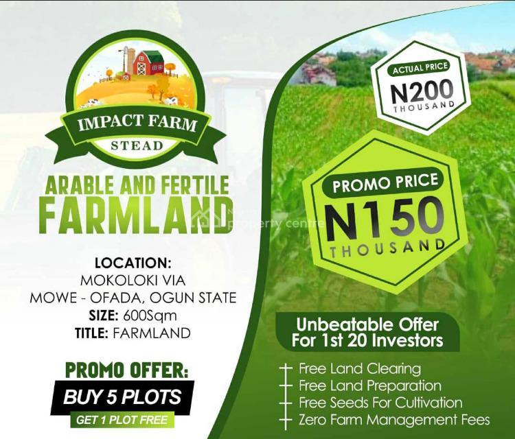 Farm Lands, Ibafo, Ogun, Commercial Land for Sale