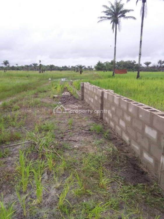 Cheapest Land in Lovely Location, Magnolia Estate, Lekki Free Trade Zone, Akodo Ise, Ibeju Lekki, Lagos, Residential Land for Sale
