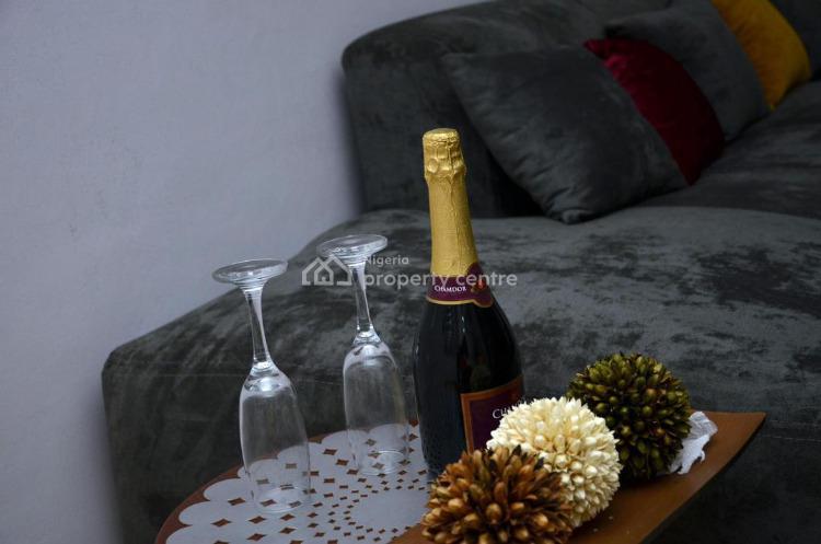 Lovely 1 Bedroom Apartment, Lekki Phase 1, Lekki, Lagos, Mini Flat Short Let