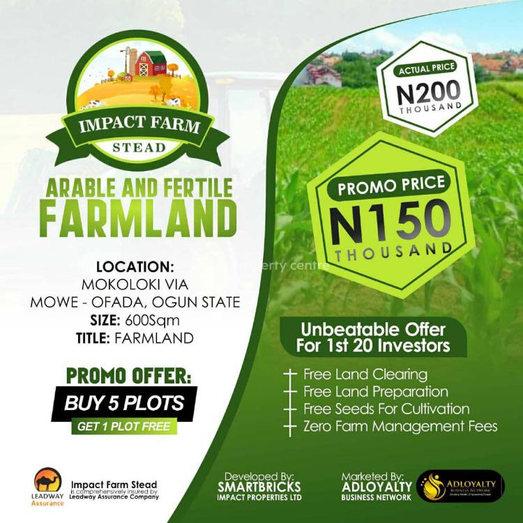 Impact Farm Stead, Mowe Ofada, Ogun, Land for Sale