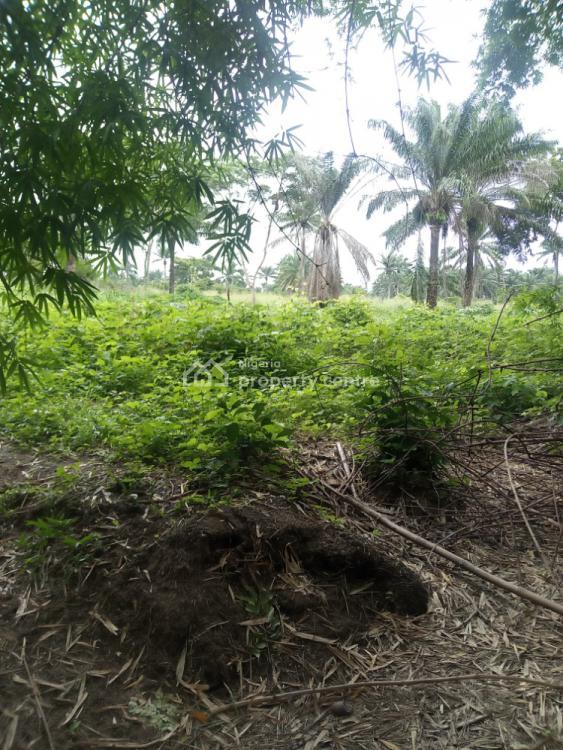 Farm Land in a Very Good Location, Akanran, Off Olorunsogo, Ibadan, Oyo, Commercial Land for Sale