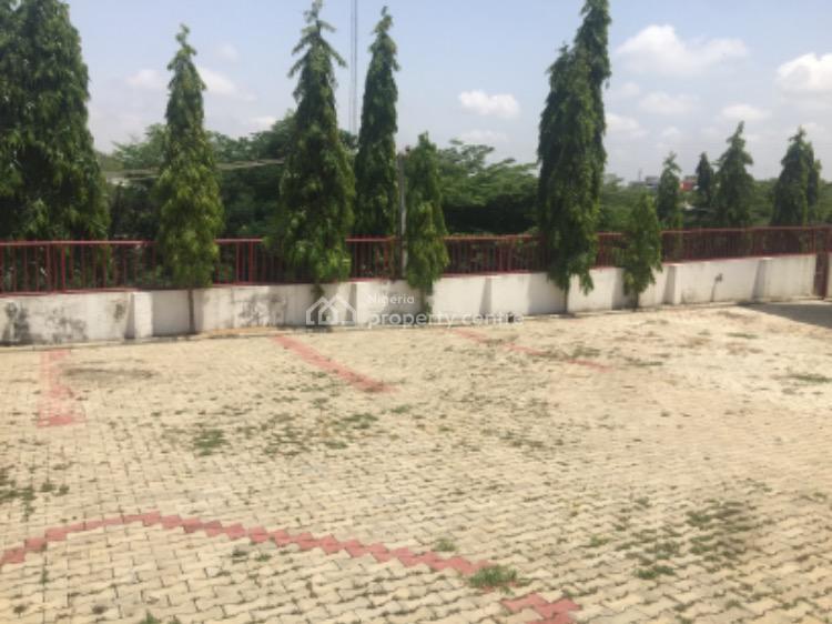 Top Notch Five-bedroom Detached Duplex, Asokoro District, Abuja, Detached Duplex for Rent