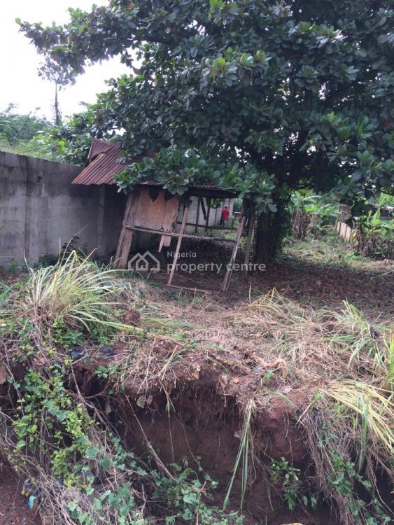 Virgin Full Plot of Land, Agbeyawo Lodge, Off Oriwu College Igbe Road, Igbogbo, Ikorodu, Lagos, Residential Land for Sale