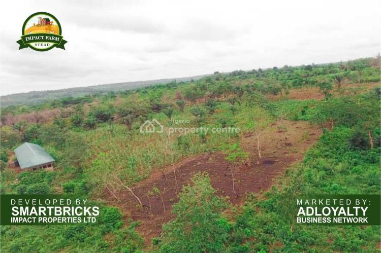 Affordable Farm Land, Impact Farm Stead, Mowe Ofada, Ogun, Commercial Land for Sale