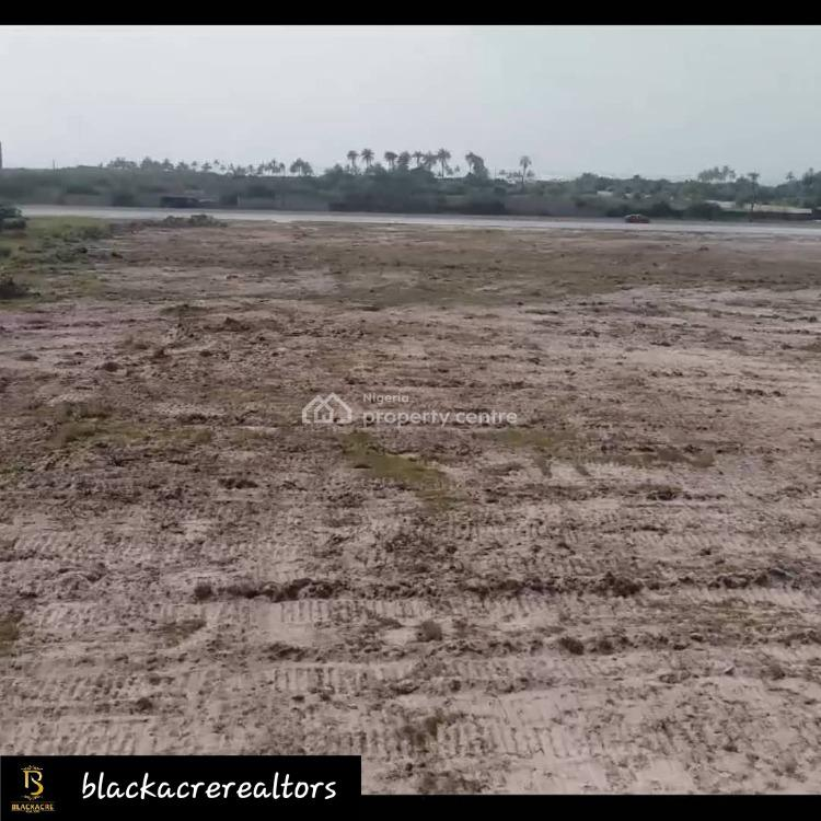 Premium Plot of Land with Excellent Title, Lekki Free Trade Zone Road, Opposite Access Bank Plc, Ibeju Lekki, Lagos, Mixed-use Land for Sale