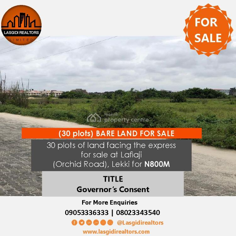30 Plots of Land Facing Expressway, Orchid Road, Lafiaji, Lekki, Lagos, Land for Sale
