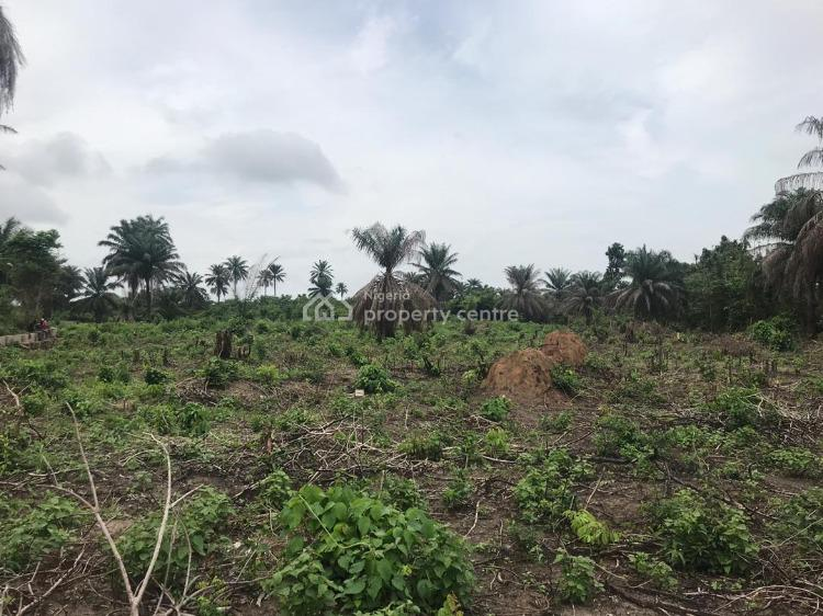 Hurry Now! Before The Price Increases, St. Augustine University Road, Epe, Lagos, Mixed-use Land for Sale