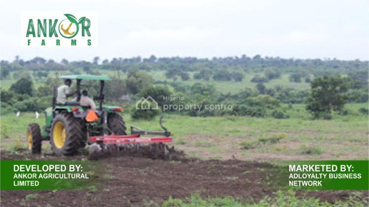 Ankor Farms, Epinpeju, Lanlete Town, Ibadan, Oyo, Commercial Land for Sale