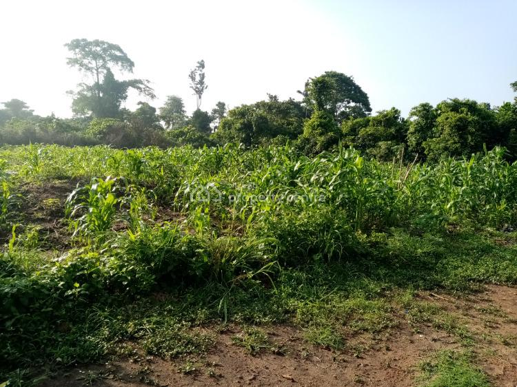 6 Arces Farm Land, Epe, Lagos, Mixed-use Land for Sale