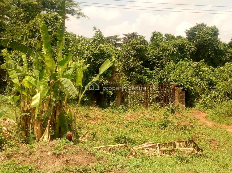 Very Good Farmland in a Viable Location, Obafemi Owode, Ogun, Commercial Land for Sale