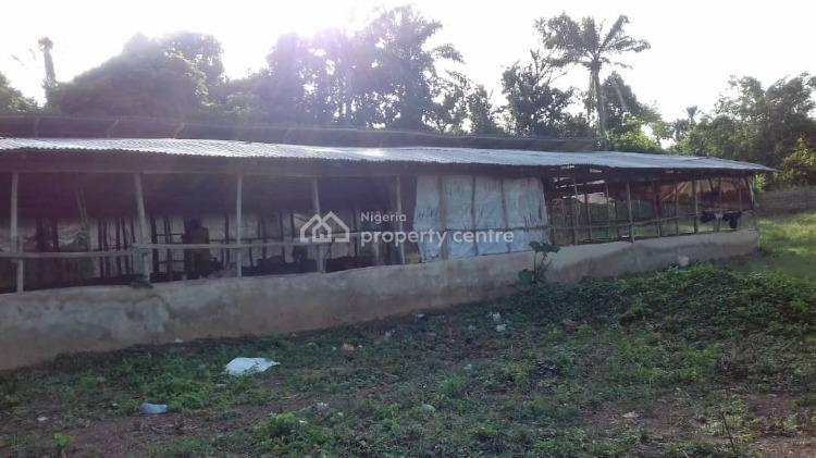 Poultry Farm with All Facilities, Arulogun Road, Ojoo, Ibadan, Oyo, Commercial Land for Sale