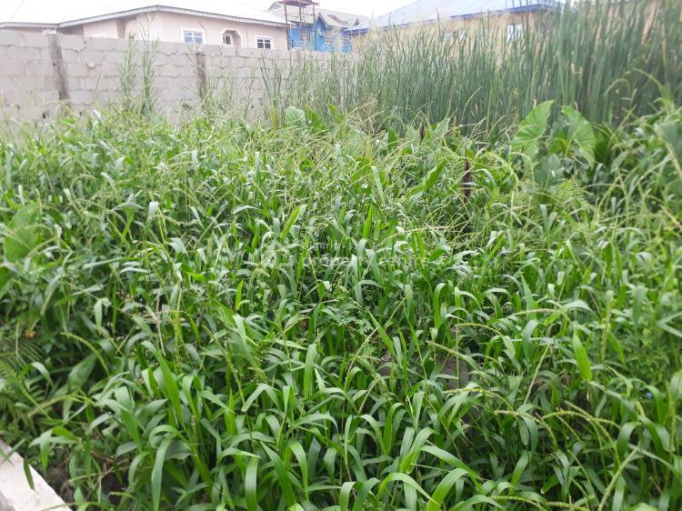 4 Plots of Dry Land Directly Facing Lekki-epe Expressway with C/o, Olokonla, Ajah, Lagos, Mixed-use Land for Sale