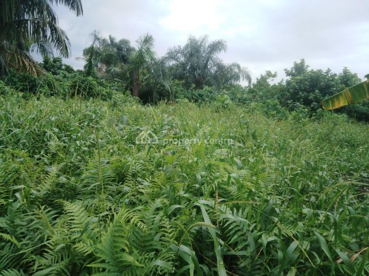 Half Plot of Land with Genuine Document, Ojokoro New Town, Agric, Ikorodu, Lagos, Mixed-use Land for Sale