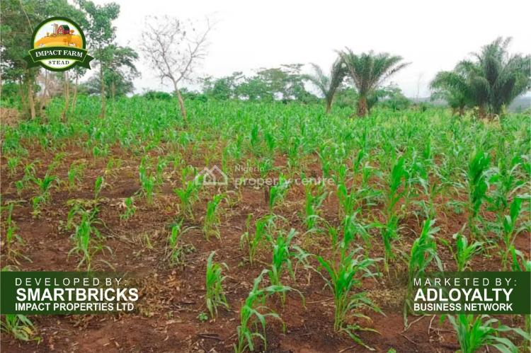 Impact Farm Stead, Mowe Ofada, Ogun, Mixed-use Land for Sale