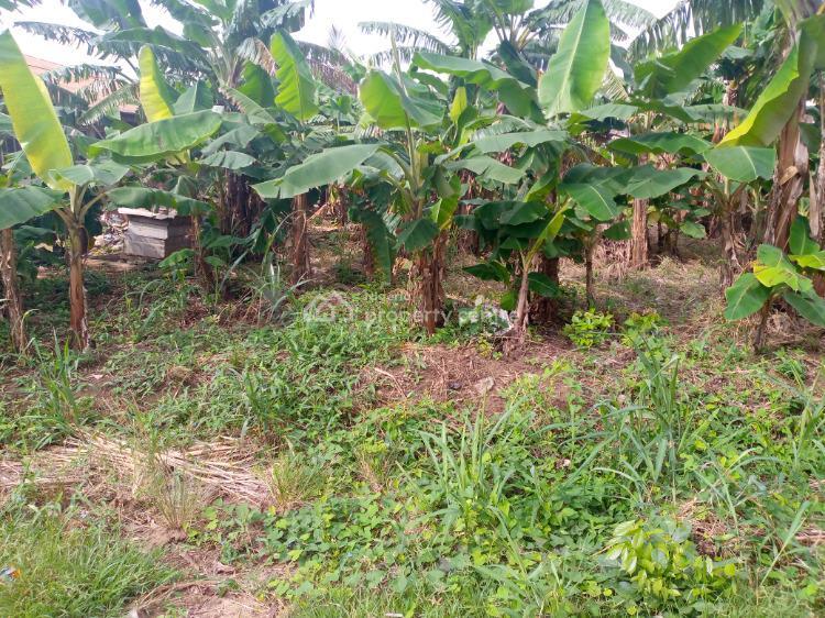 Distress Plot of Land, Makogi, Magboro, Ogun, Residential Land for Sale