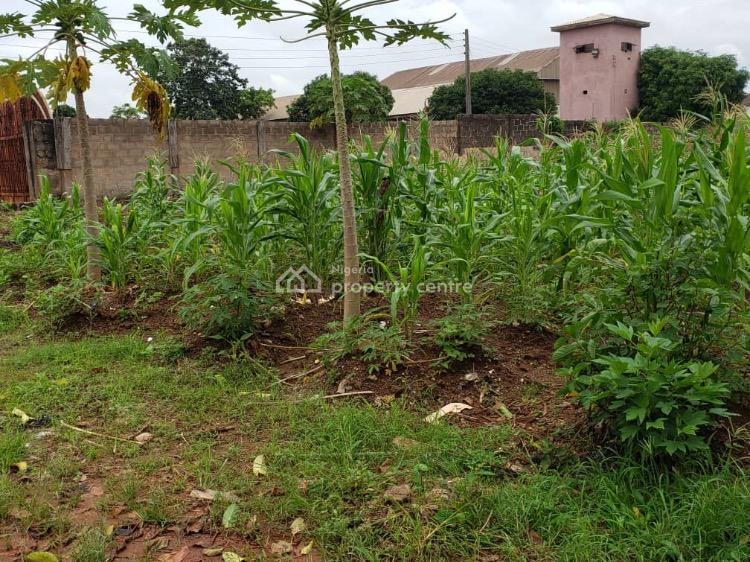 Sharp 2 Plots of Land on a Tableland, Behind New Haven Hotels, New Haven Extension, New Haven, Enugu, Enugu, Mixed-use Land for Sale