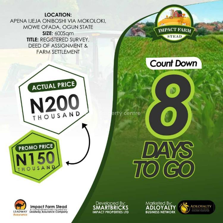Registered Survey, Deed of Assignment and Farm Settlement., Apena Ijeja Oniboshi Mokoloki, Mowe Ofade., Mowe Ofada, Ogun, Commercial Property for Sale