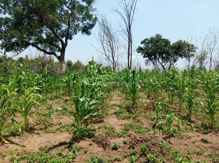 5000 Acres of Farm Land., Inahin Village Komu Town., Itesiwaju, Oyo, Commercial Land for Sale