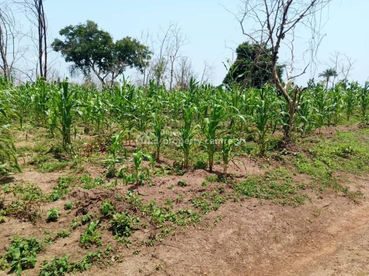 4000 Acres of Land, Owode Village Ipapo Town Itesiwaju Lg, Itesiwaju, Oyo, Commercial Land for Rent