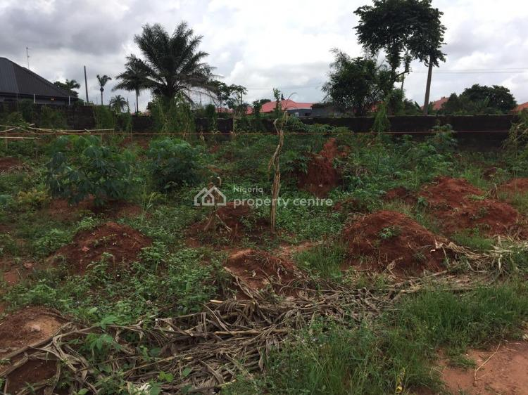 100/100 Land, Housing Estate Area, Asaba, Delta, Mixed-use Land for Sale
