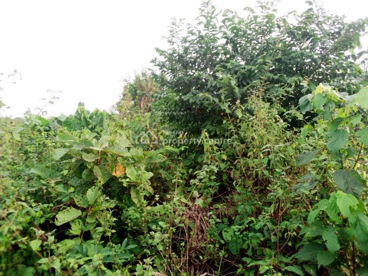 Acres of Land in Developing Area., Idiroko Road, Ado-odo/ota, Ogun, Mixed-use Land for Sale