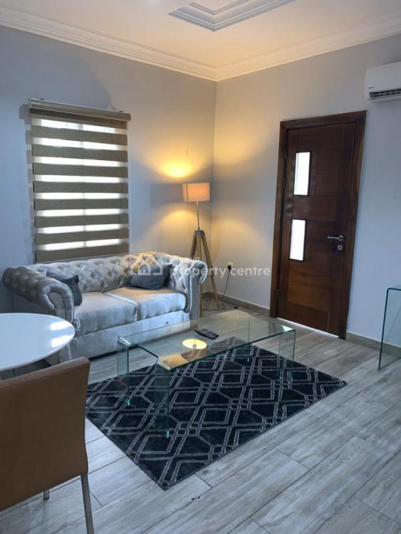 Glamorous One Bedroom Apartment, Lekki Phase 1, Lekki, Lagos, Flat Short Let