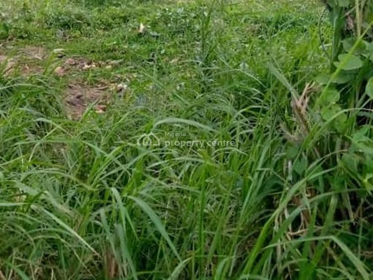 Bare Land Measuring 550sqm, Iwaya, Yaba, Lagos, Residential Land for Sale