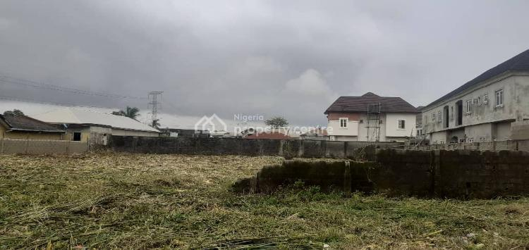 an Acre of Land at a Secured and Residential Area, Maurice Abimbola Street Even Estate, Ado, Ajah, Lagos, Residential Land for Sale