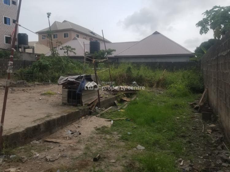 Vacant Land, Festac Link Bridge Road, Festac, Amuwo Odofin, Lagos, Commercial Land for Rent