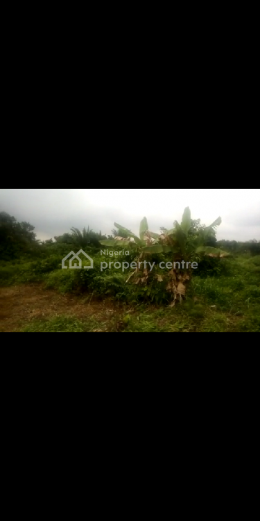 Acre of Land, Ifedapo Estate, Off Sholu Road, Ifo, Ogun State, Ifo, Ogun, Mixed-use Land for Sale