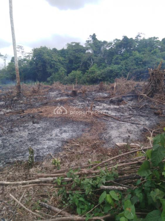 Full Plot and Half Plot of Land, Isiu, Ikorodu, Lagos, Mixed-use Land for Sale