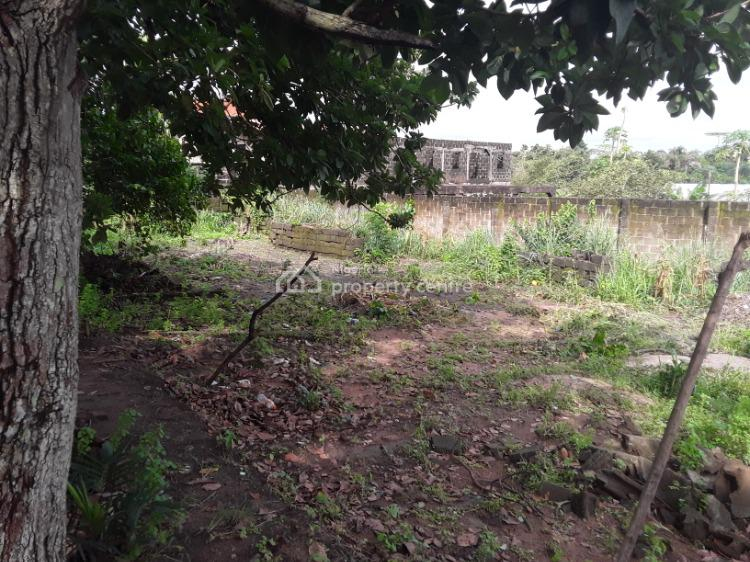 a Virgin Land Measured (60ft By 120ft) Fenced & Gated in a Serene Area, Iyewo Estate, Araromi B/stop Akesan,, Igando, Ikotun, Lagos, Mixed-use Land for Sale