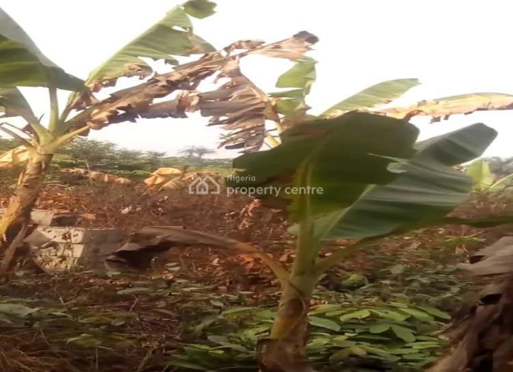 Excision, Itawo/mojoda, Epe, Lagos, Mixed-use Land for Sale