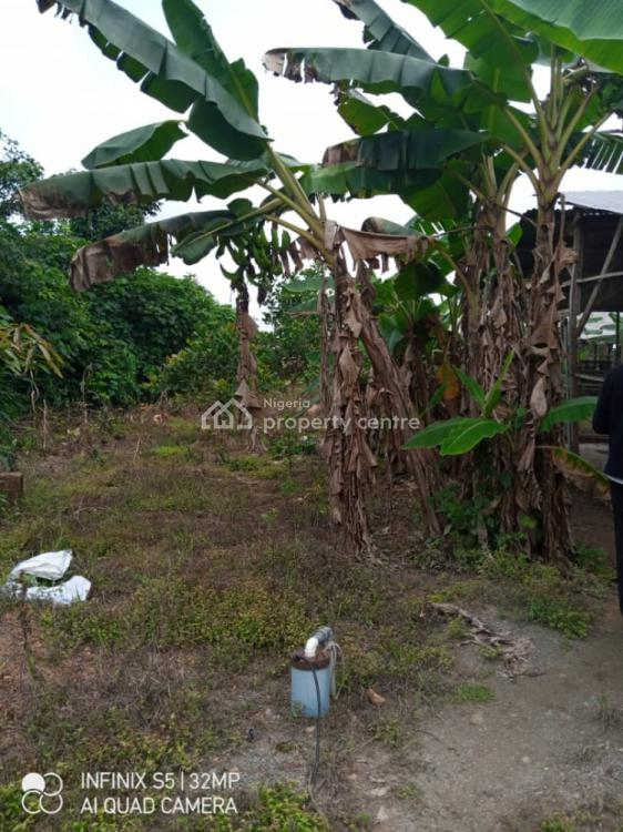 2.5 Acres of Farm Land with Poultry, Ogunranti Village Akinyele Local Government Area, Arulogun, Ojoo, Ibadan, Oyo, Factory for Sale