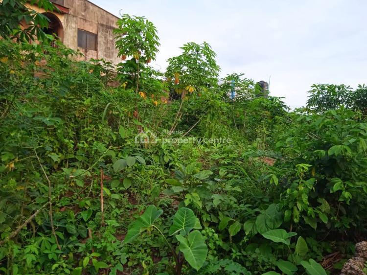 a Standard Plot Size of Land, Ishawo Via Igbo Olomu Road, Agric, Ikorodu, Lagos, Mixed-use Land for Sale