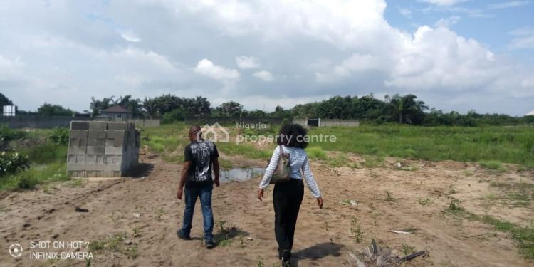 Affordable Dry Land, Vine Gardens Estate, Ibeju Lekki, Lagos, Mixed-use Land for Sale
