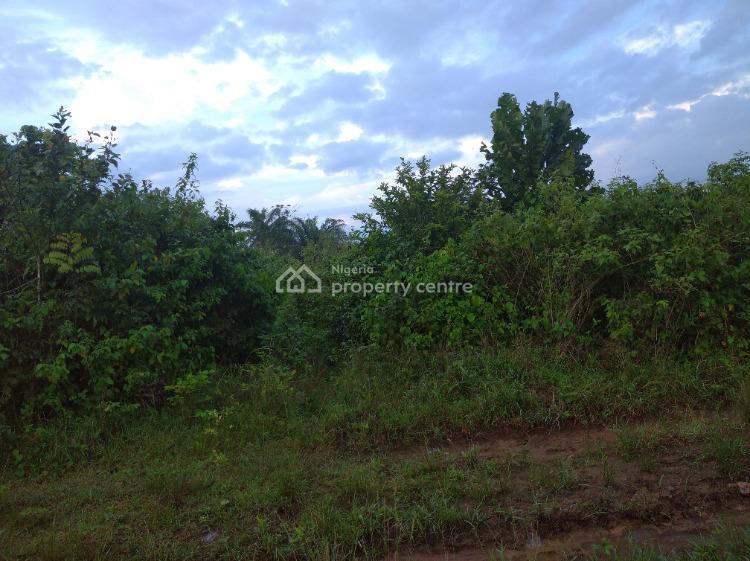 1 Acre of Land, Along Sokoto Road, Atan Ota, Ado-odo/ota, Ogun, Mixed-use Land for Sale