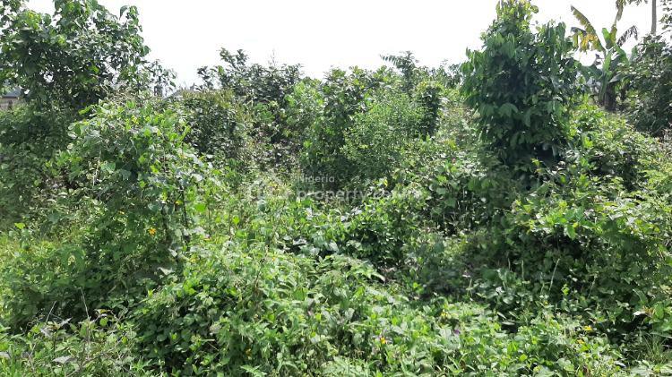 Well Located Plot of Land Measuring 464 Sqm, Rumuekini Road, Rumuekini, Port Harcourt, Rivers, Mixed-use Land for Sale
